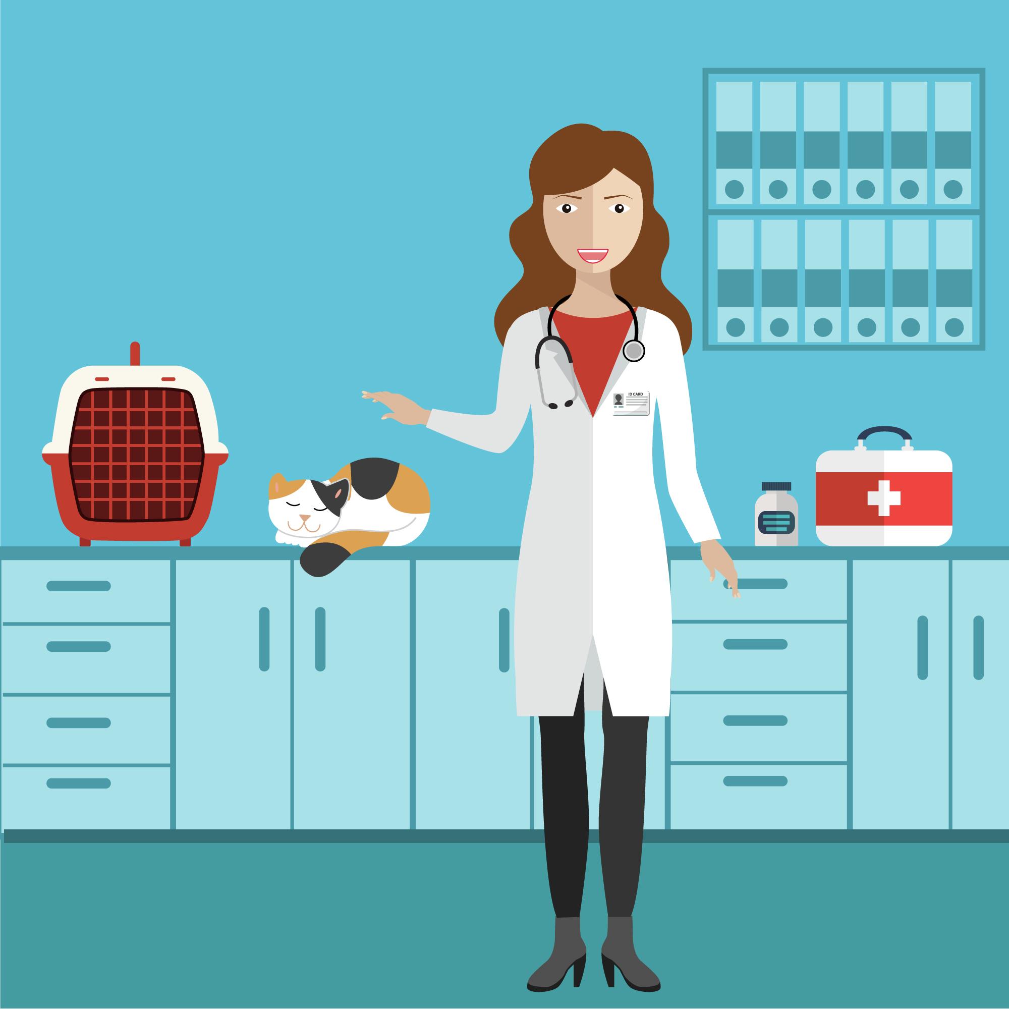 Abrir uma clínica veterinária