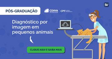 Diagnóstico por imagem em pequenos animais