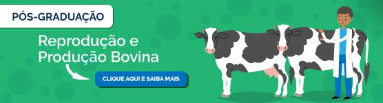 Pós-graduação em reprodução e produção bovina